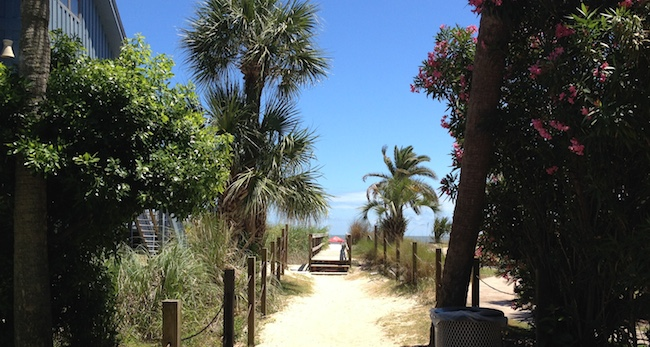 A path to the beach